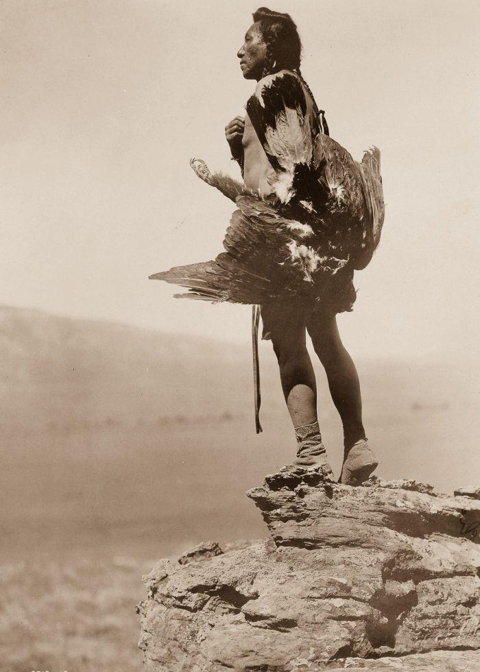 Hidatsa man eagle 1908