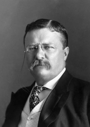 President_Roosevelt_-_Pach_Bros.tif