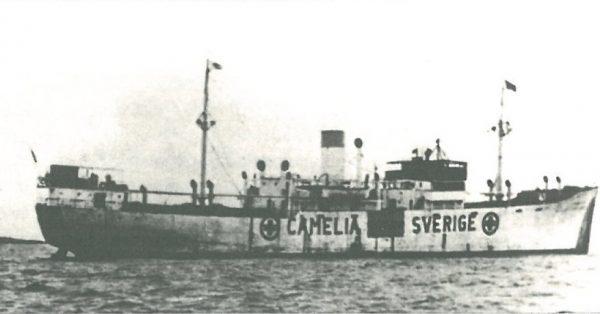 CAMELIA-600x314
